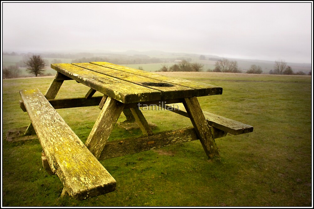 Picnic Bench by tamilian