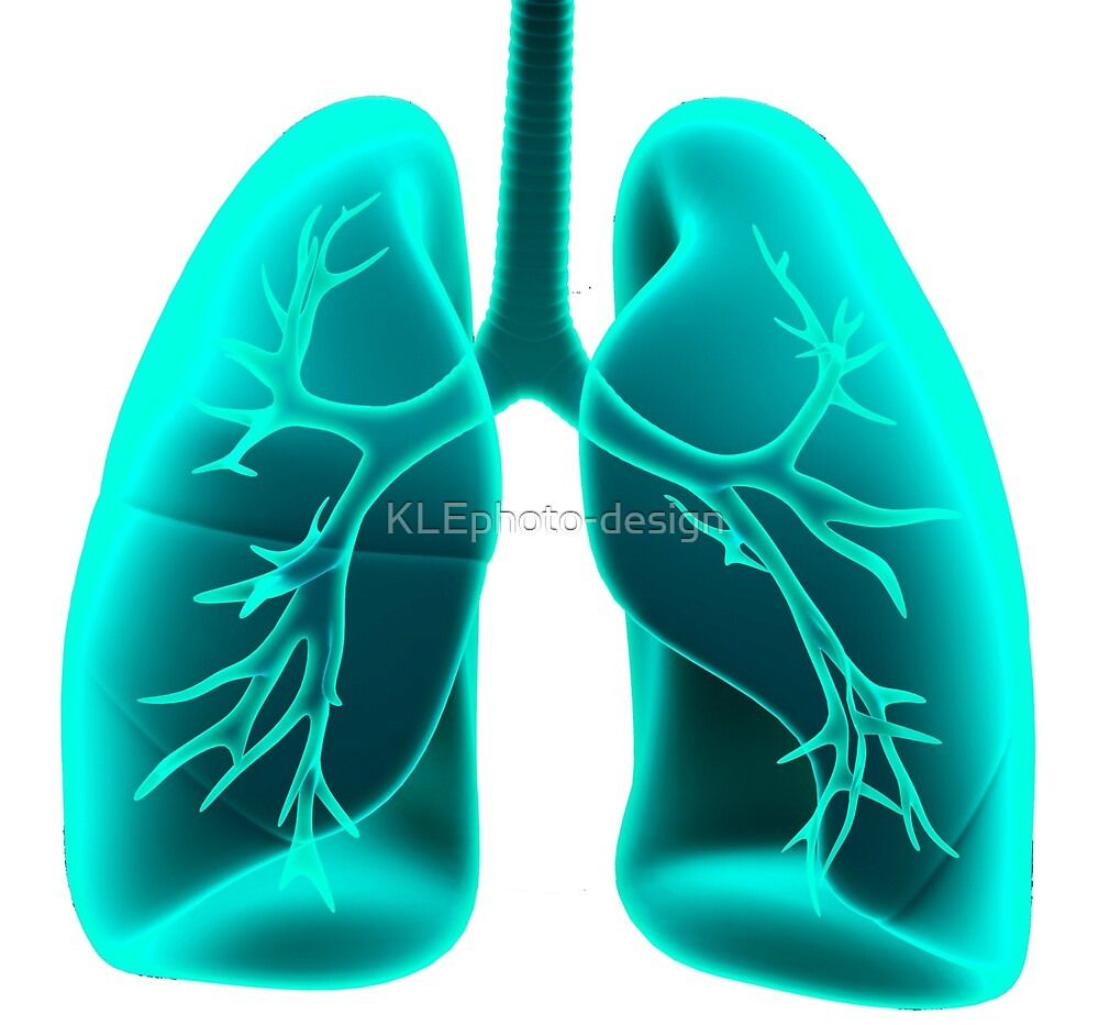 X-ray Vision Lungs by KLEphoto-design