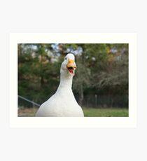 Daisy the Duck Loves to Talk Art Print