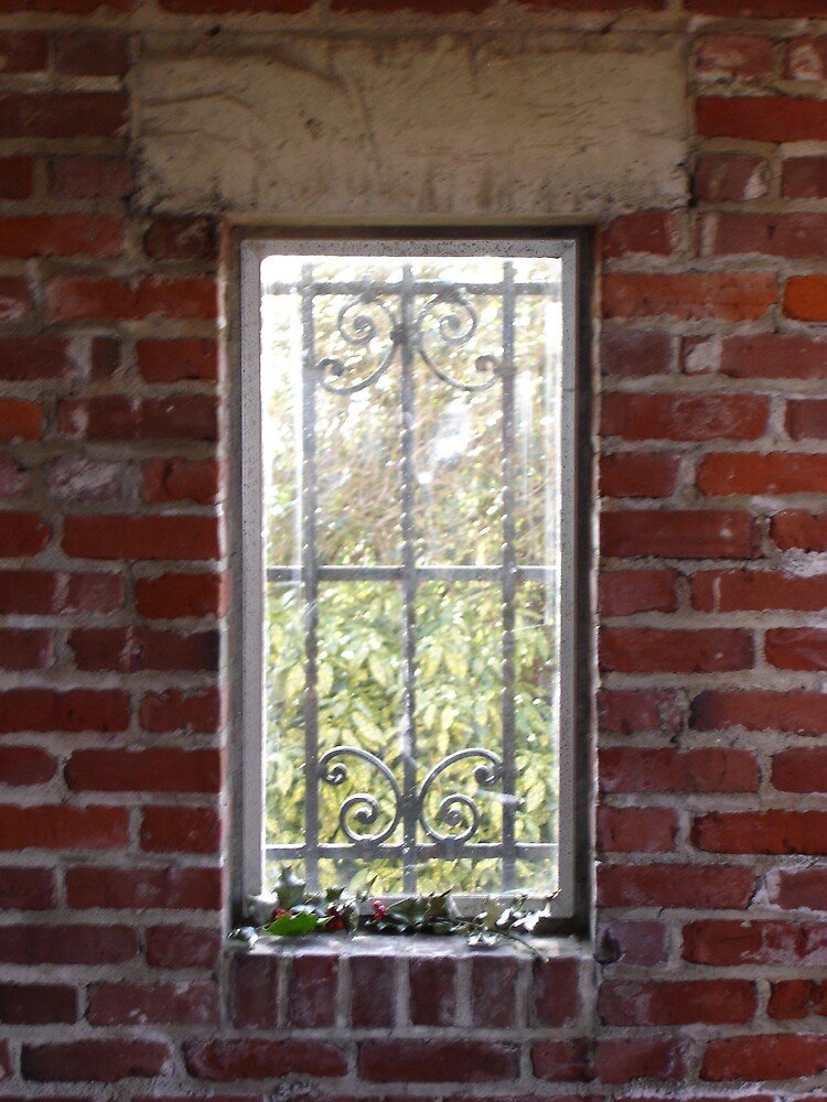 Iron window with holly by Jillian  Shellabarger