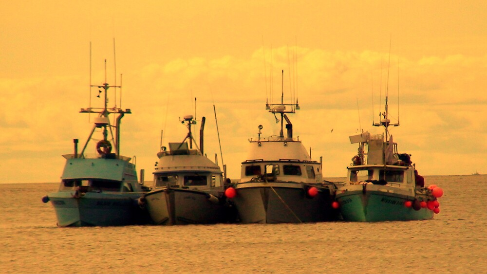 Alaskan Salmon Fishing Boats by Chris Popa