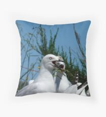 Three Heads Are Better Than One! - Seagulls - NZ Throw Pillow