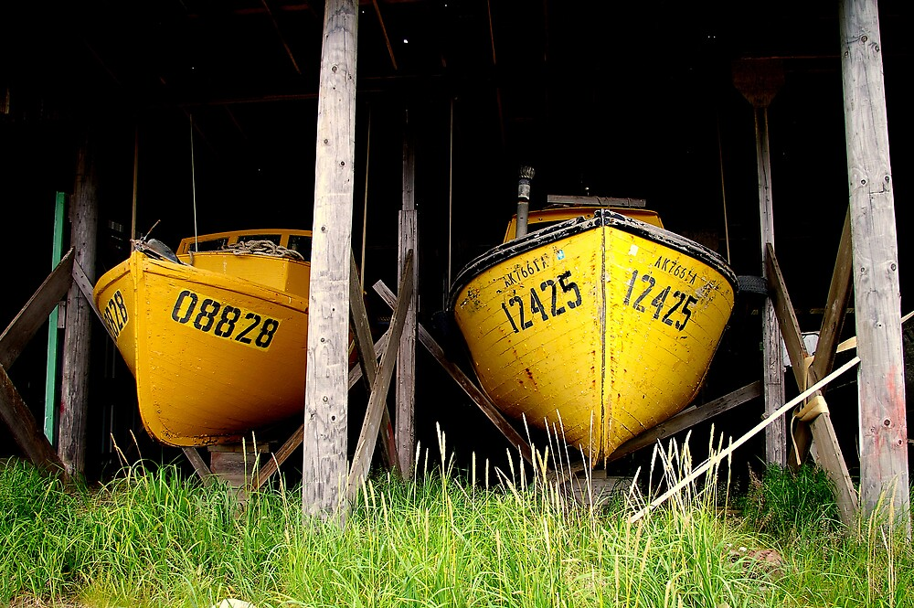 2 Retired Fishing Boats by Chris Popa