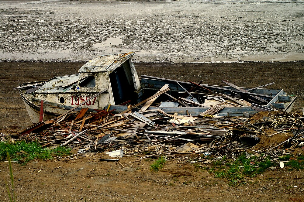 Ship Wreck by Chris Popa