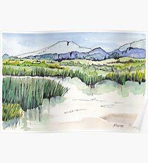 Wetland in Tarlton, Gauteng, South Africa Poster