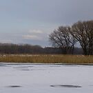 Iced Mohawk River by jenndes