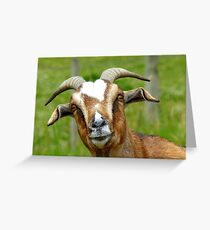 Nanny Reporting For Duty! - Goat - NZ Greeting Card