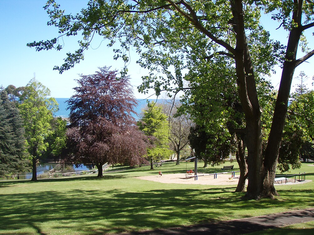 beautiful coloured trees in Burnie Park - restful place to be by gaylene