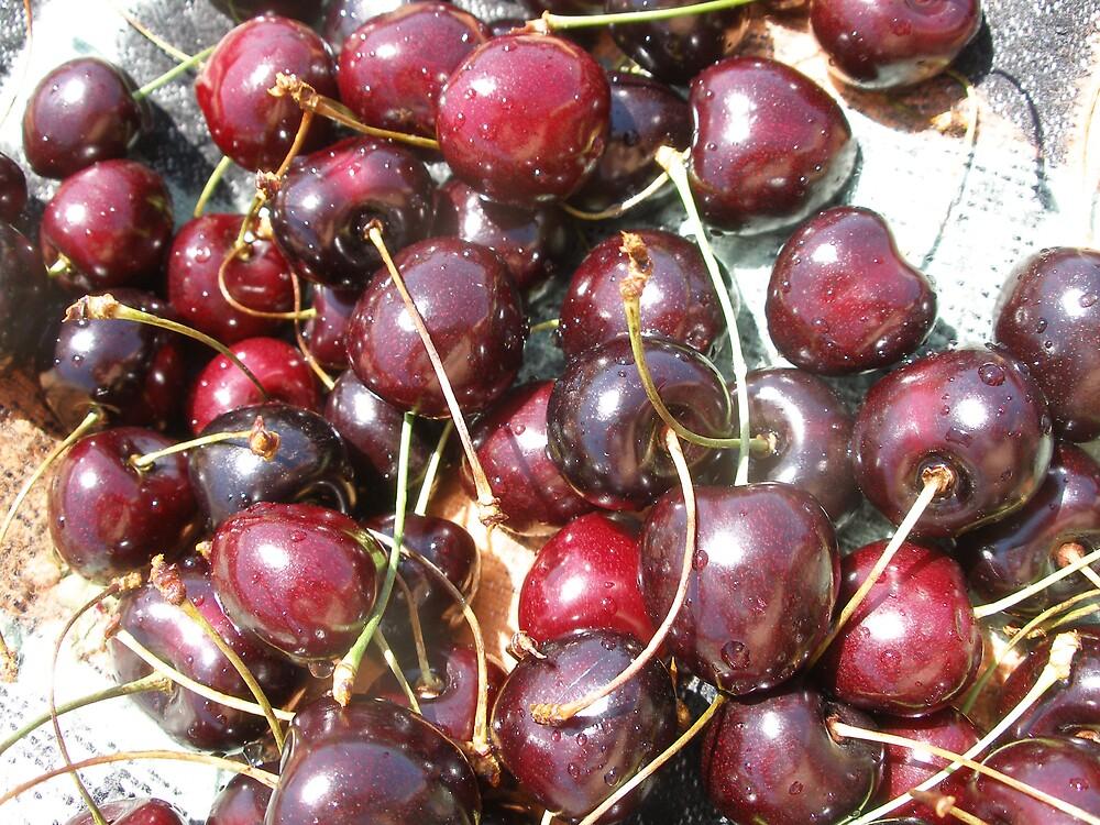 fresh cherries by kveta