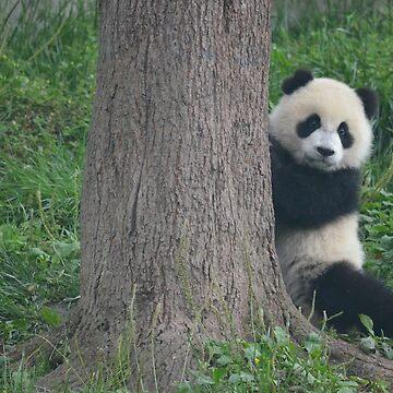 Peek-a-Boo Panda by TheIntrepidSoul