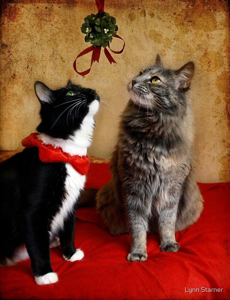 Jasper & Chloe under the mistletoe by Lynn Starner