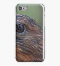 Red Shouldered Hawk iPhone Case/Skin