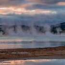 Getting Steamed up at Lake Rotorua, New Zealand by Elaine Teague