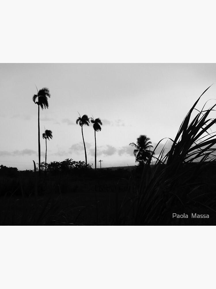hurricane by massapa