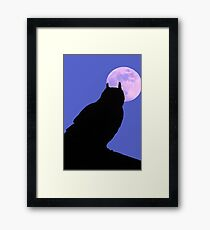 The Owl and the Moon Framed Print