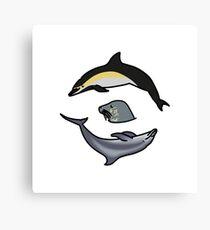 North Atlantic marine mammals Canvas Print