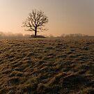 Bradford on Avon frosty morning by nakomis