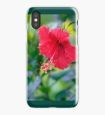 Rose Red Hibiscus Beauty iPhone Case/Skin