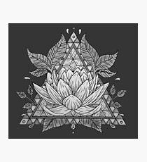 Lámina fotográfica Diseño geométrico de flor de loto gris