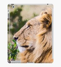 Male Lion, Maasai Mara, Kenya iPad Case/Skin