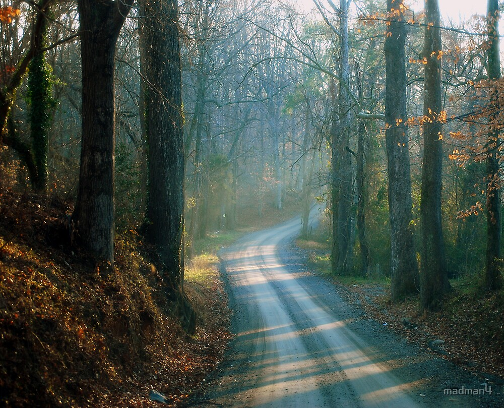 Foggy Morning Dirt Road (Rural2) by madman4