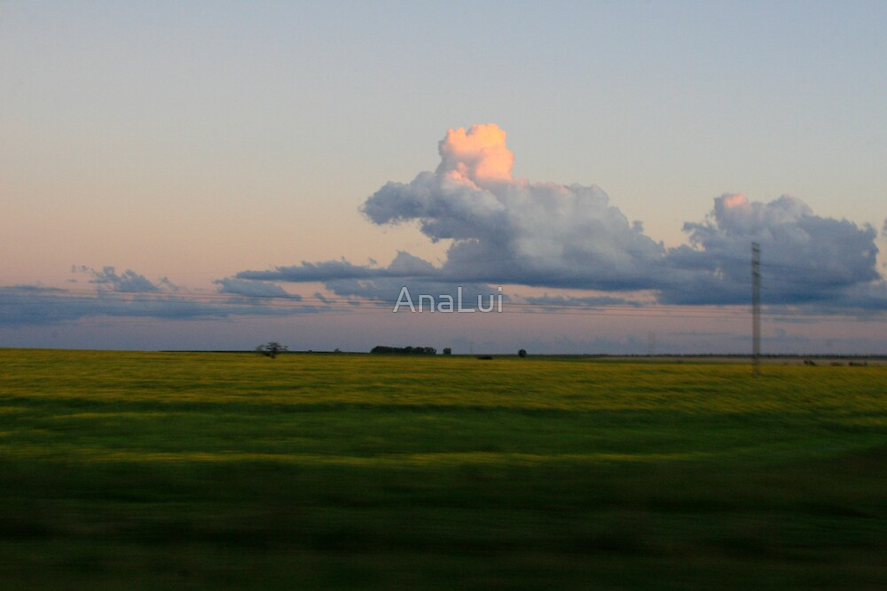 Out of Buenos Aires by AnaLui