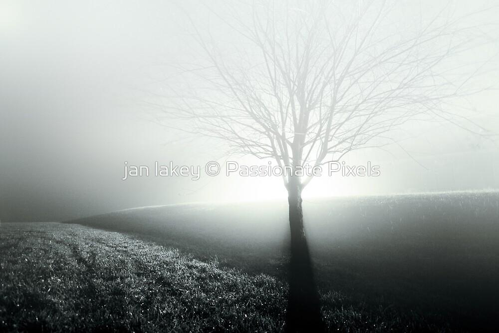 Silence by jan lakey © Passionate Pixels