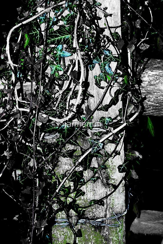 Crawling ivy by jamiemm