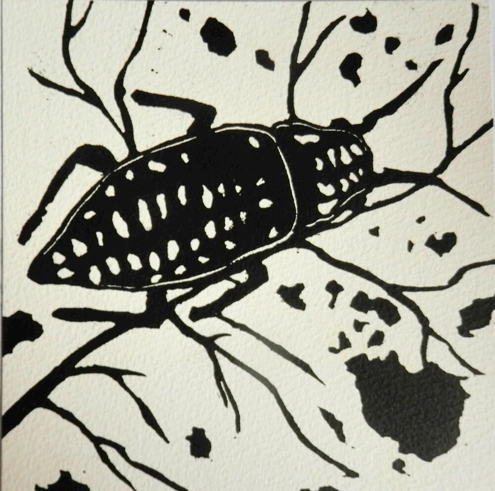 Bugs  by Sarah Jeffrey