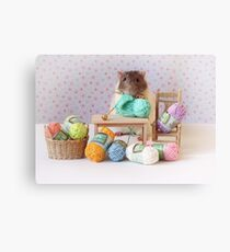 Snoozy wanted to knit ! Canvas Print
