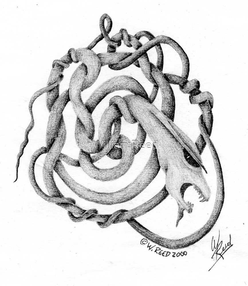 Serpentine Twist by William Reed