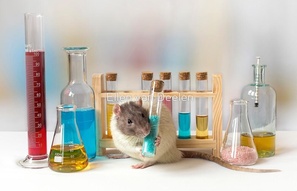 Working at the Laboratory by Ellen van Deelen