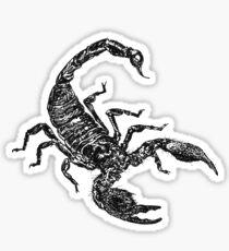 Black Scorpion Sticker