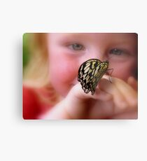 WOW!! A Paper Kite Landed On My Hand! - Paper Kite Butterfly - Dunedin NZ Metal Print