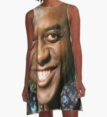 Ainsley Harriott A-Line Dress
