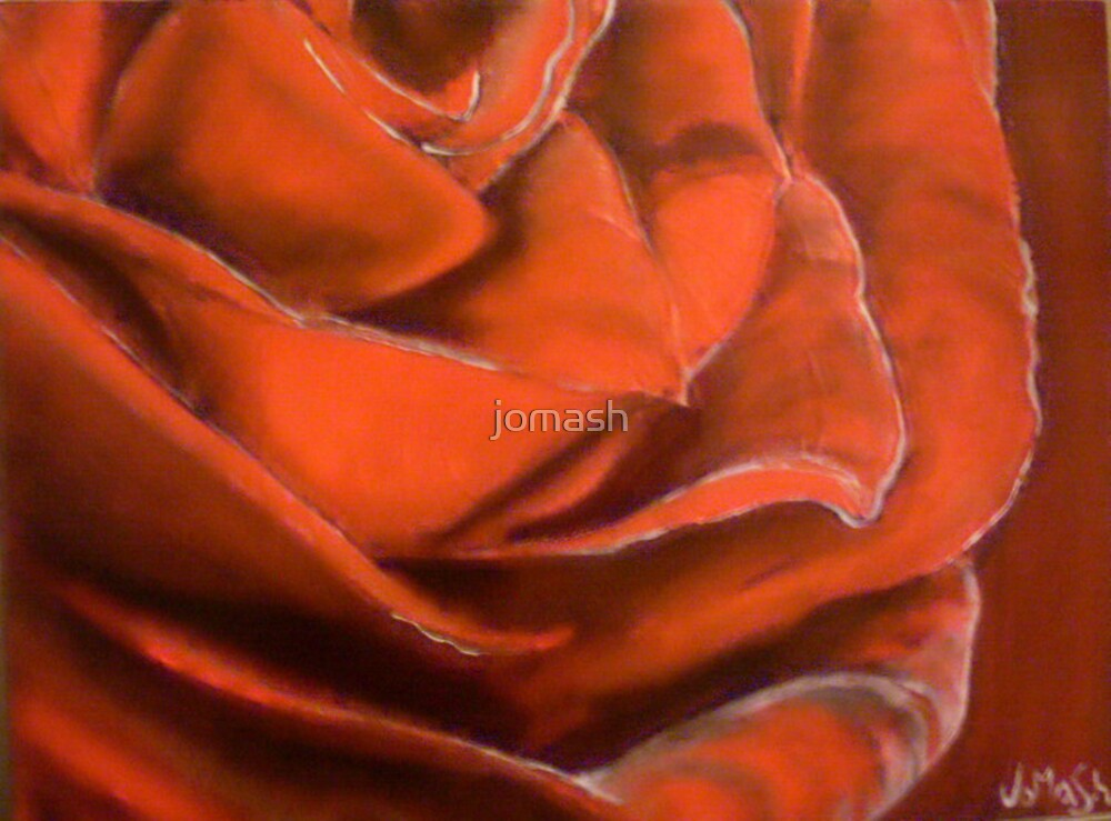 Red Rose by jomash