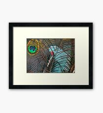 You're In My Face Mr...! - Blue Ringneck Parrot - NZ Framed Print