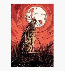 Moon Gazer Hare, Artwork Photographic Print