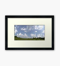 HDR Composite - Overgrowth in Nature Preserve Framed Print