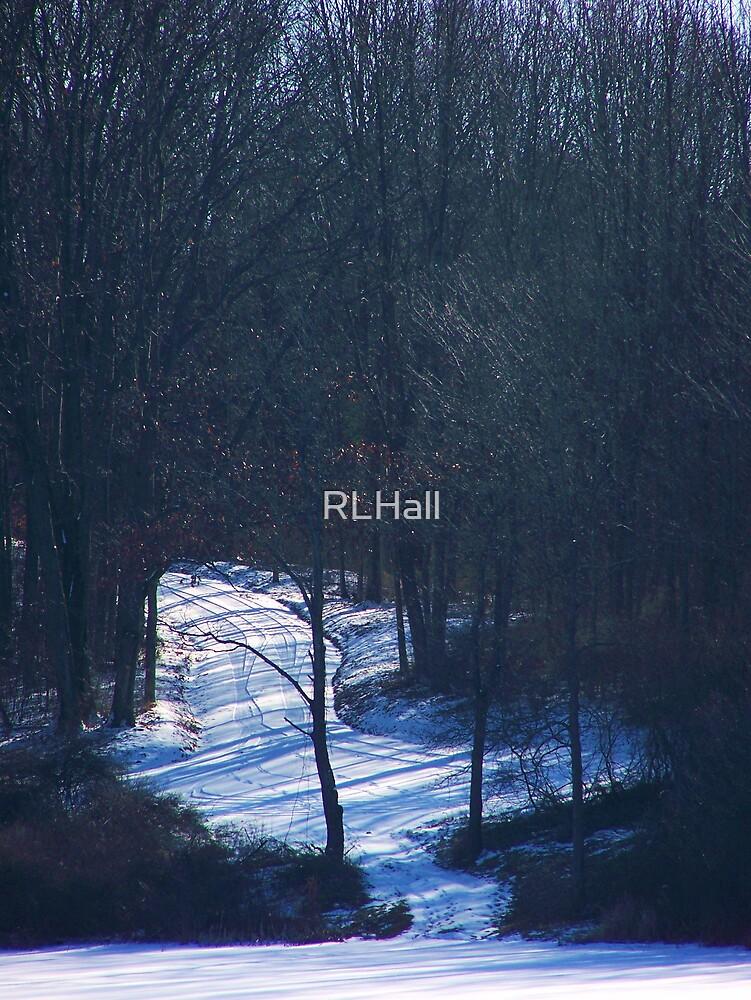 Shadowland by RLHall