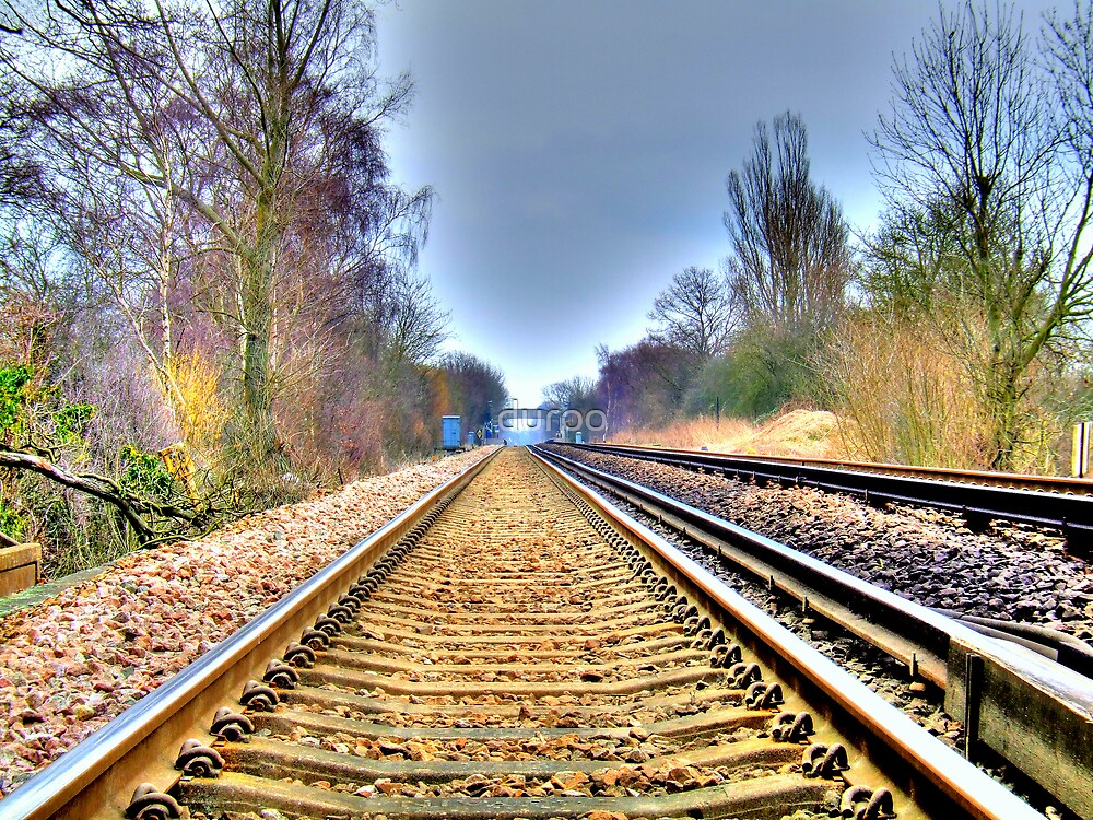Up the Track by duroo