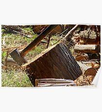 Flying Sawdust! - Chopping Wood - NZ Poster