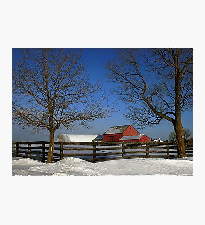 Back At The Farm Photographic Print