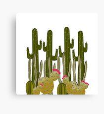 Cactus Sanctuary Canvas Print