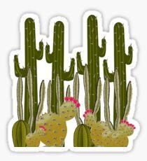 Cactus Sanctuary Sticker