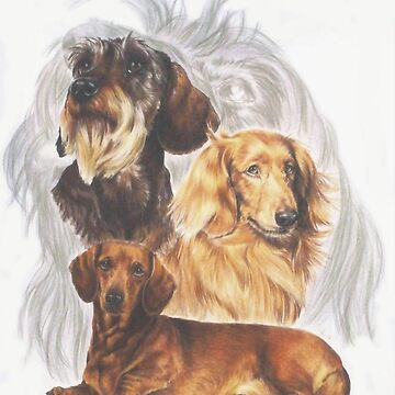 Dachshund Grouping by BarbBarcikKeith