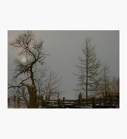 Grey Winter Afternoon Photographic Print