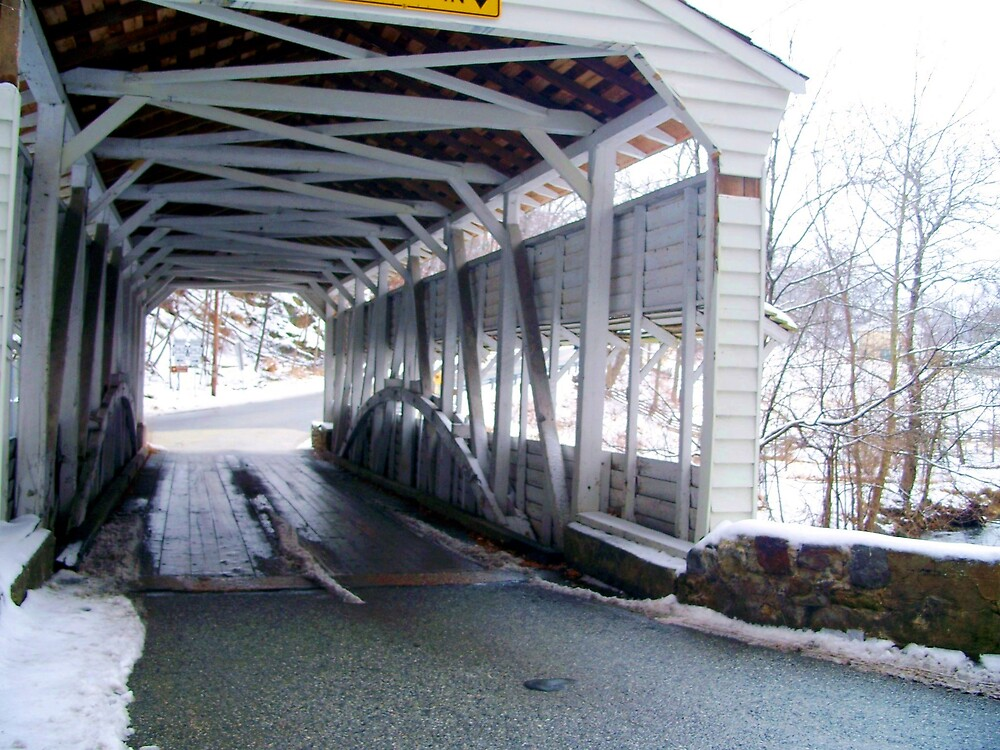 Inside the Covered Bridge by Judi Taylor