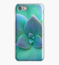 Close Up Of A Turquoise Cactus iPhone Case/Skin