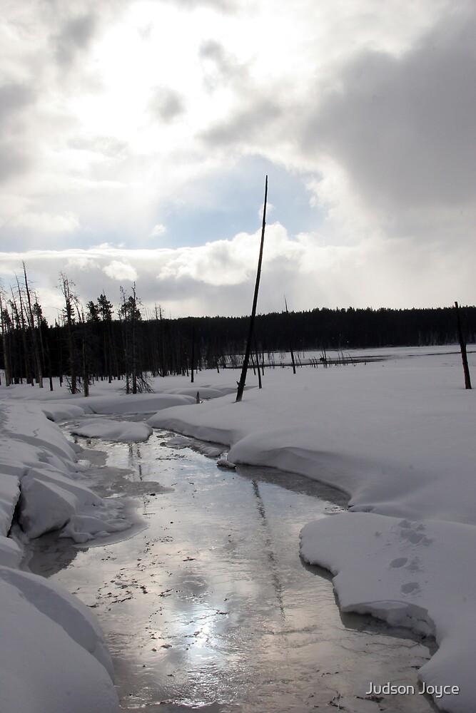 Reflections of Yellowstone by Judson Joyce